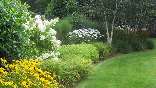 Landscape Maintenance & Management